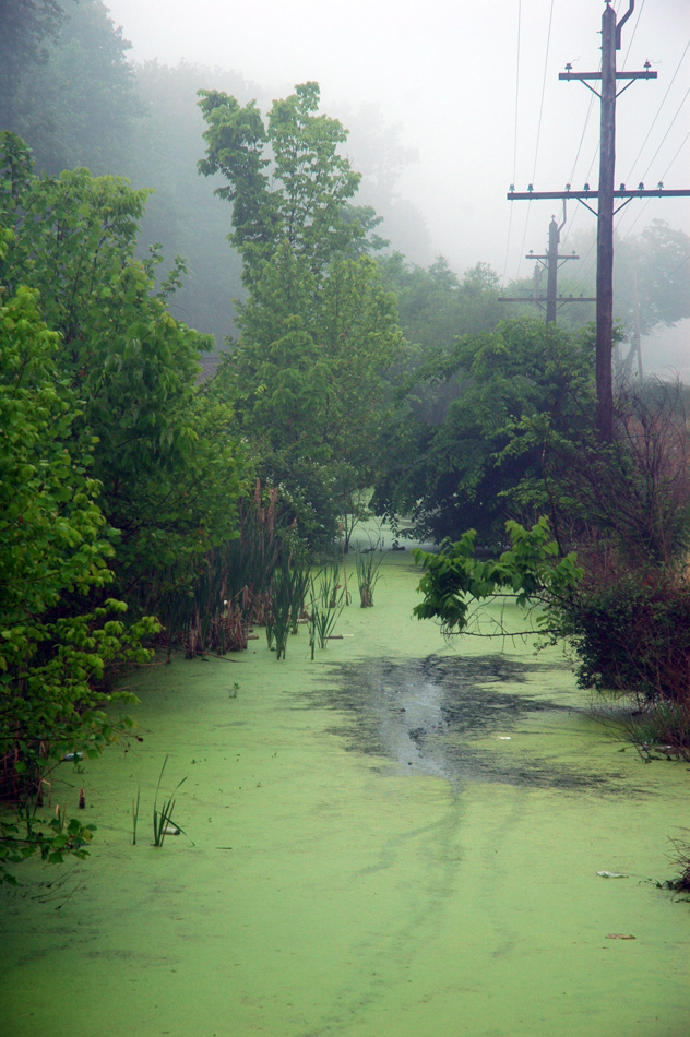 jorzik-ohio-green-pond-17-05-2006dsc00026