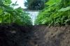 15-07-2012dsc00049